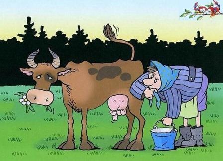 Какой можно написать рассказ про животновода в 3 классе?