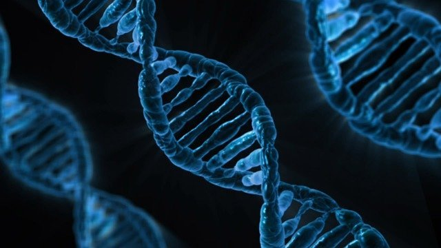 спираль ДНК