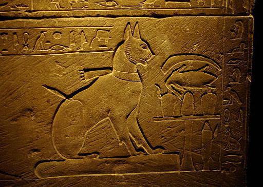 Древний Египет: Сколько у кошек жизней?