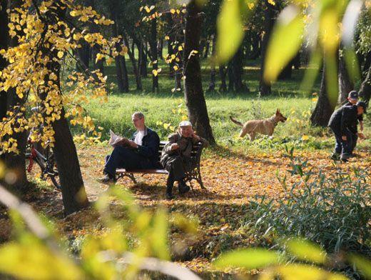 Бабье лето в парке.