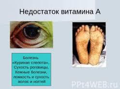 26faa645528a38c5368a65331c9af244341.jpg