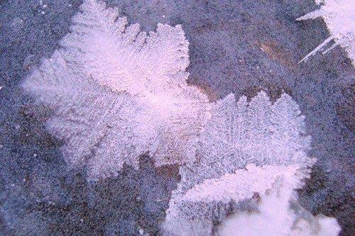 На что были похожи снежинки по форме выпавшие в Москве в 1944году
