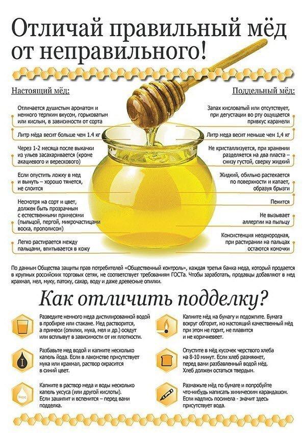 Как отличить натуральный мед от поддельного