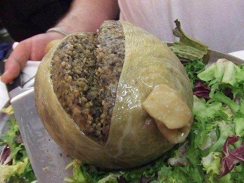 личинки едят Касу марцу