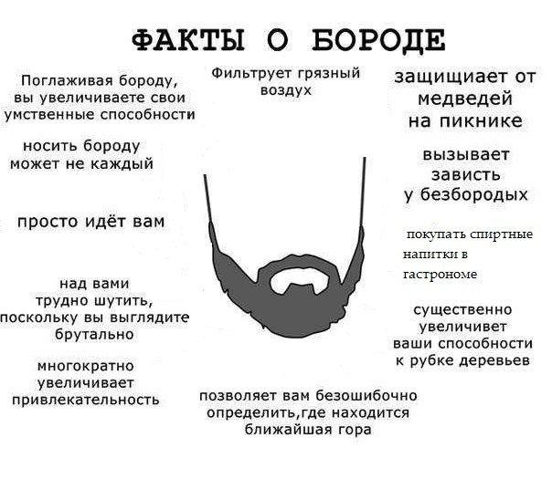 Юмор с бородой