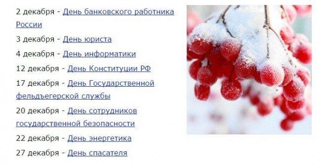 Какие праздники есть в декабре в россии