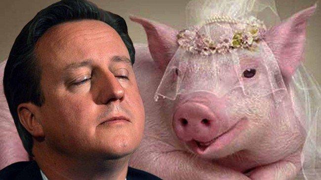 подложить свинью - фразеологизм