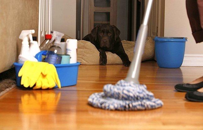 Мытьё полов в квартире