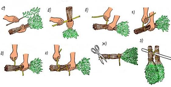 правила заготовки веников