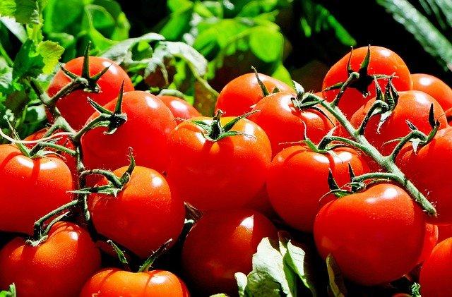 Сколько раз заливать помидоры кипятком