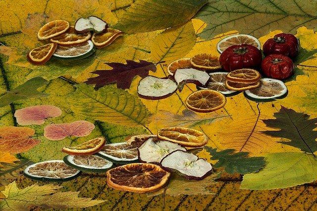 Как называются высушенные плоды сливы?