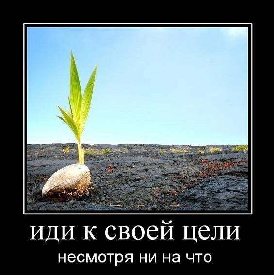 иди к своей цели