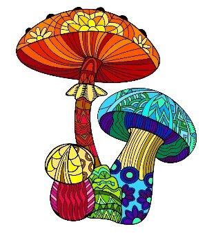 Какие составить предложения со словом гриб?