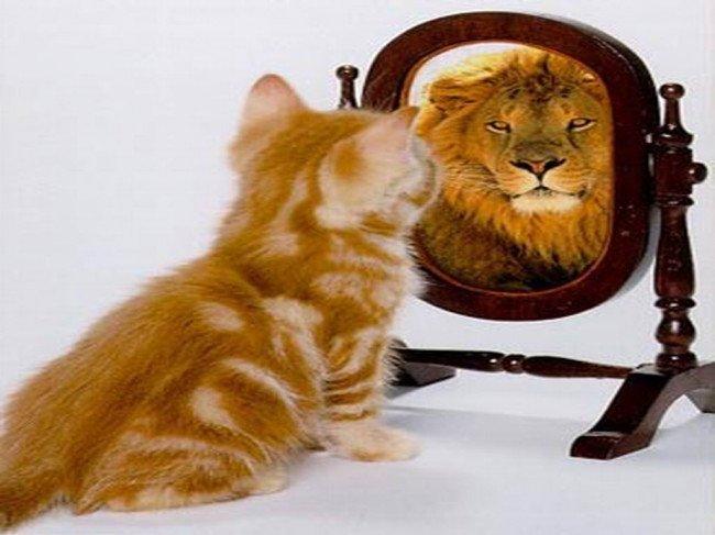 Как поменять свою самооценку?