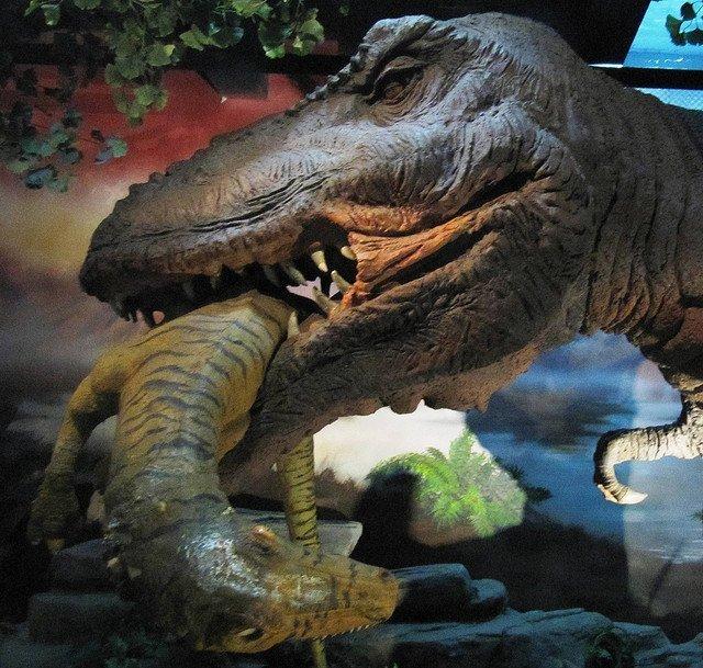 Динозавры. Эпоха без людей