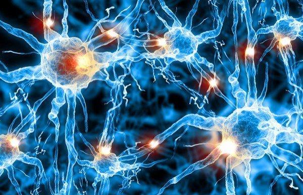 нервные заболевания - виды и лечение