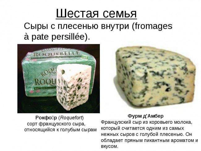 Шестая семья сыров