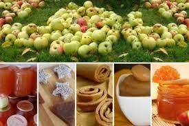 какие сорта яблок используются для пастилы