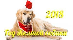2018 - год желтой земляной собаки