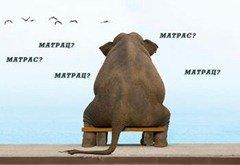 матрас или матрац