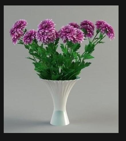 Что добавить в цветы чтобы дольше стояли хризантемы в
