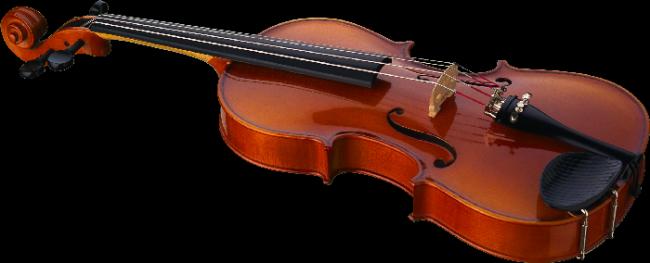 скрипка - вариант ответа