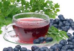Чем полезна лесная ягода черника