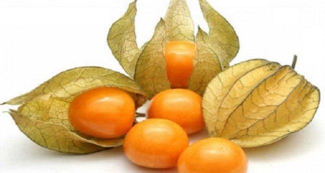 Физалис - золотые ягоды