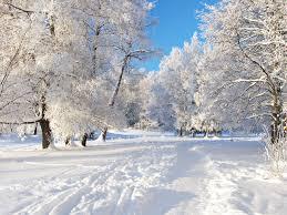 зимние приметы