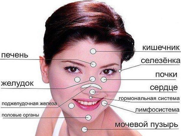 сетка лица и диагноз