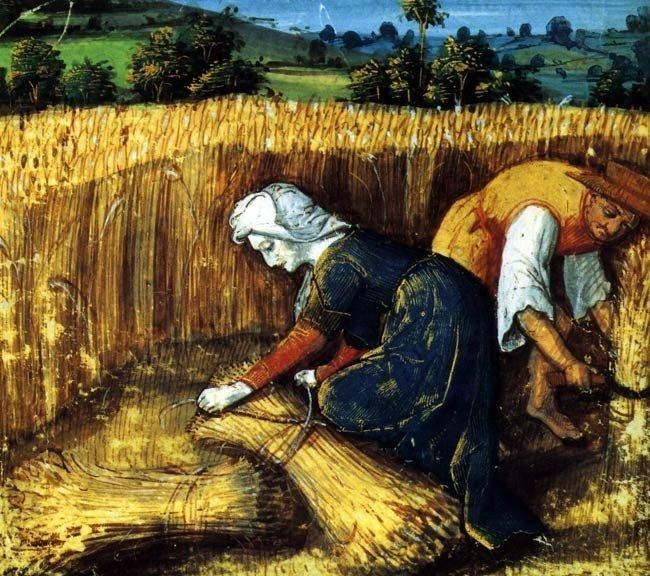 Несовершенство технологий земледелия делало жизнь средневекового крестьянина полностью зависимой от природных факторов.