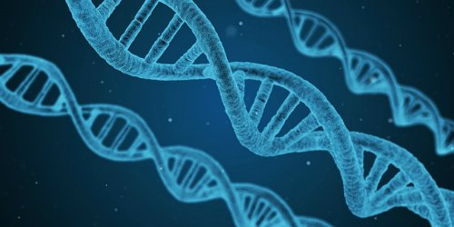 Нити ДНК, наука.