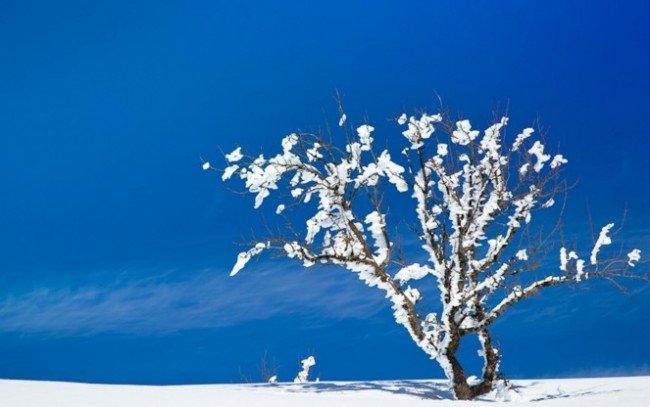 куда поехать в России зимой и хорошо отдохнуть