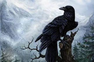 Птица ворон на Руси