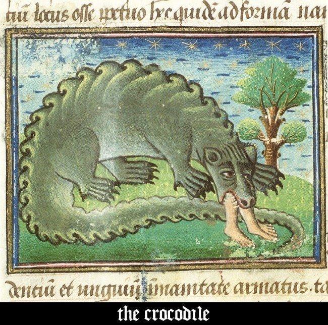 Крокодил в Средневековье