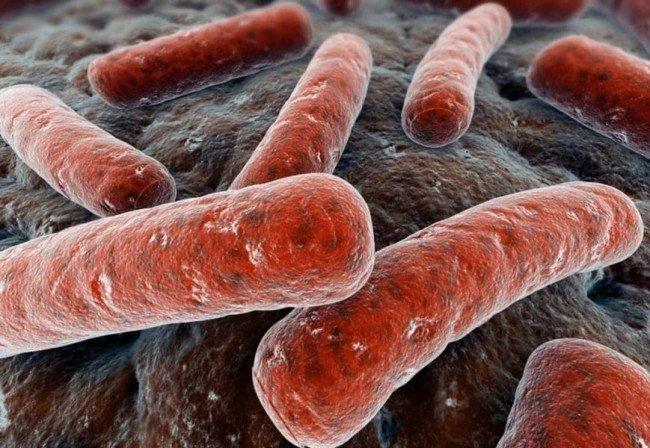 здоровье и симптомы туберкулёза у детей