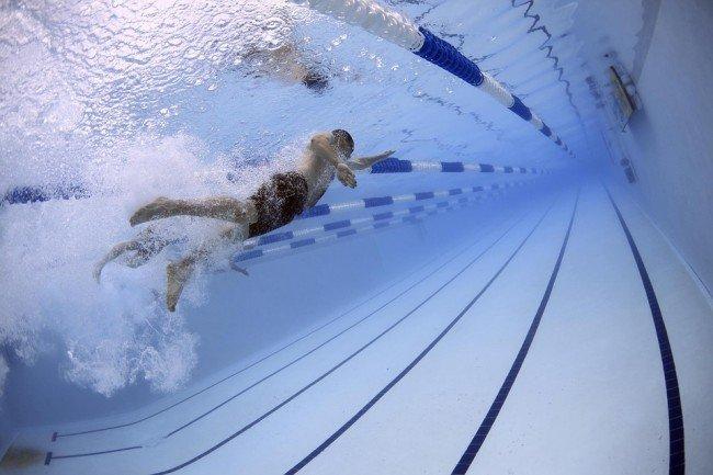 пловец профессиональный