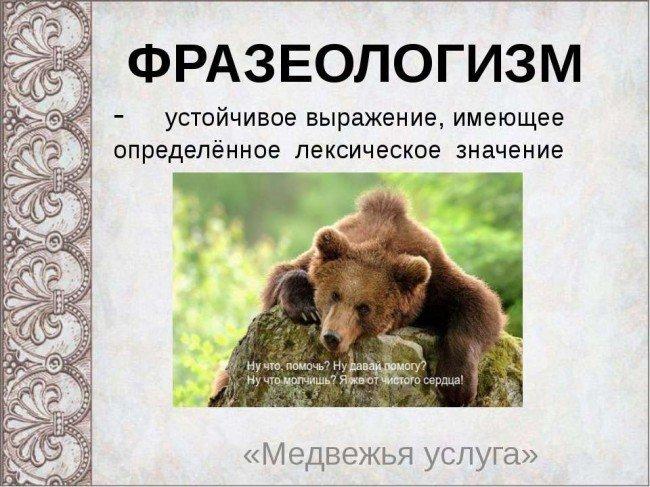 """""""Медвежья услуга"""" - почему так говорят и в каких случаях?"""