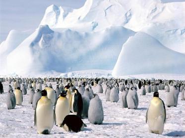 Вид на материк Антарктида.